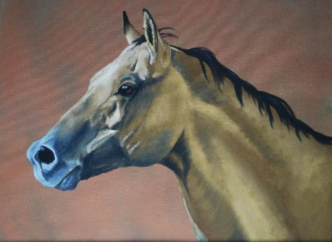 Horse in oils by Amanda Willey