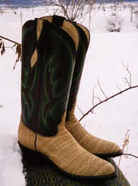 Ostrich Leather Boots by Walker Boots