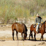 Cowboys and Ranchers in the Mormon Pioneer National Heritage Area
