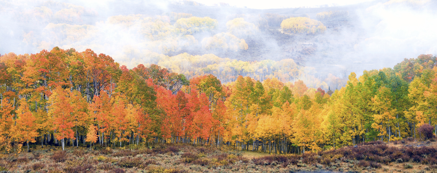 Autumn colors in Sevier Valley Mormon Pioneer National Heritage Area by Kreig Rasmussem